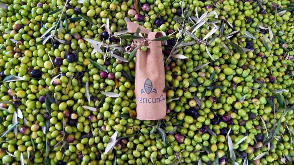 olio extravergine Agricura