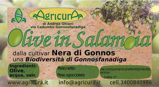 olive biodiversità gonnese gonnosfanadiga