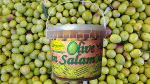 olive nera di gonnos salamoia gonnosfanadiga