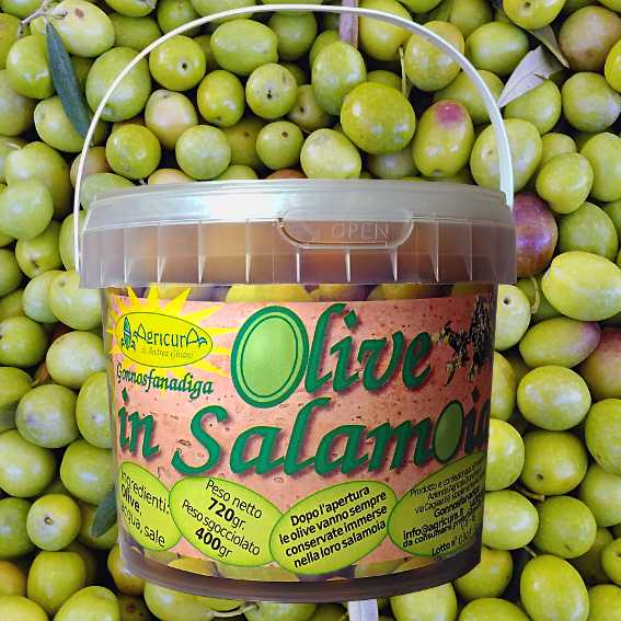 Olive in Salamoia Gonnosfanadiga